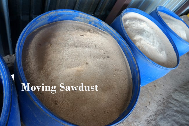 sawdust to organic compost wood from the hood mississippi mushrooms