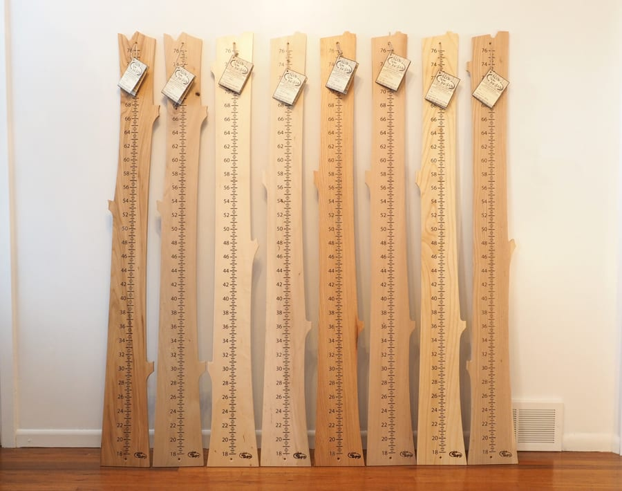 Growth chart ash finished wood from the hood