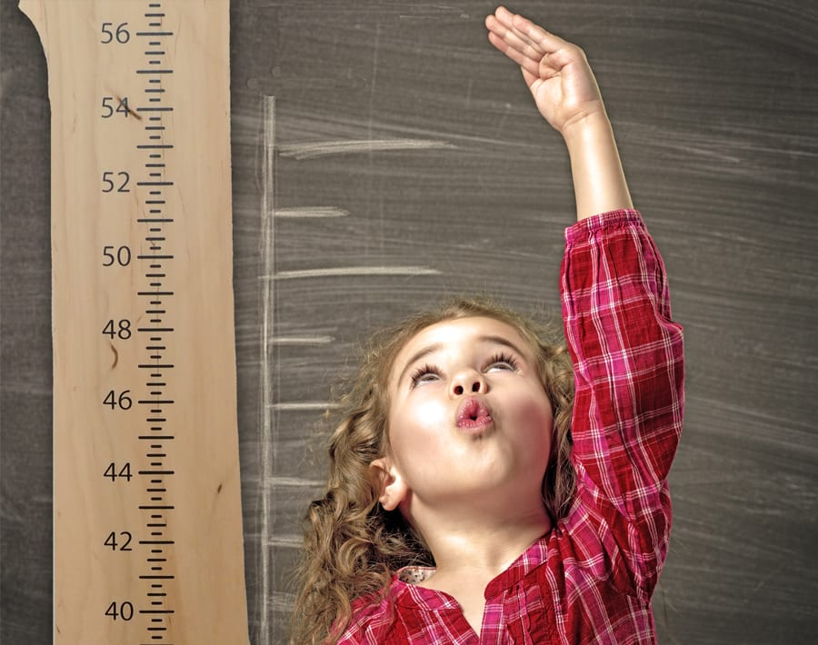 Wood From The Hood Maple Growth Chart