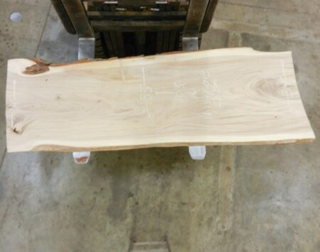 American Elm Natural edge Slab Wood From the Hood Minneapolis