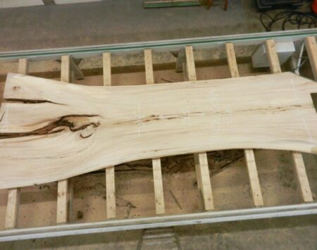 American Elm Natural Edge Slab Wood From the Hood