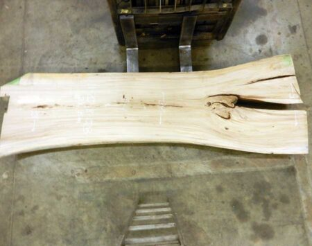 Live Edge Slab American Elm Wood From the Hood Minneapolis