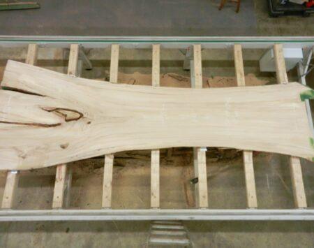 American Elm Natural edge Slab Wood From the Hood Minneapolis