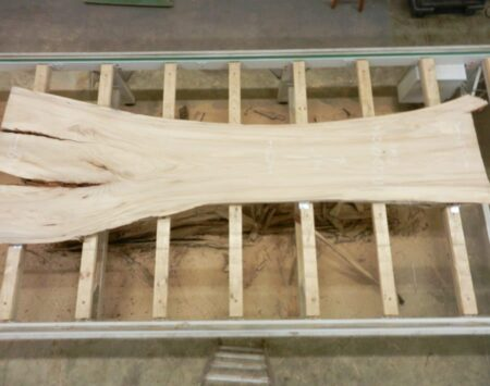American Elm Live Edge Slab Wood From the Hood Minneapolis