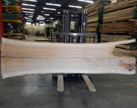 Ash Live Edge Slab Wood From the Hood Minneapolis
