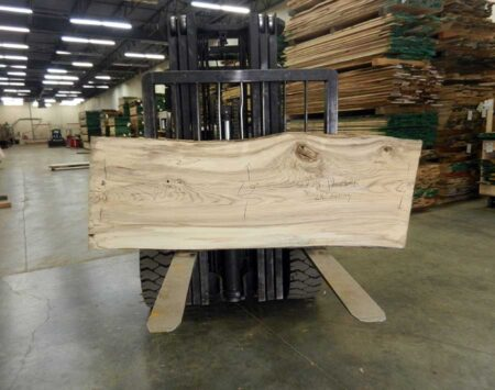 Natural Edge Slab Hackberry Wood From the Hood Minneapolis