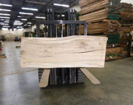 Hackberry Live Edge Slab Wood From the Hood Minneapolis