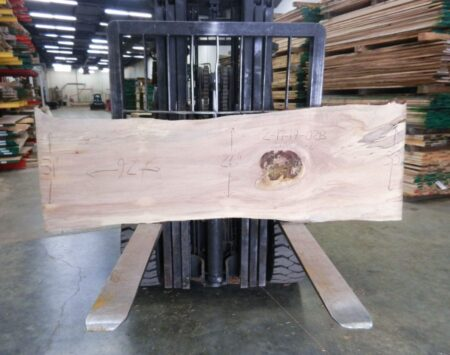 Silver Maple Natural Edge Slab Wood From the Hood Minneapolis