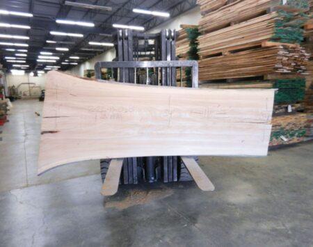 American Elm Live Edge Slab Wood From the Hood Minneapolis