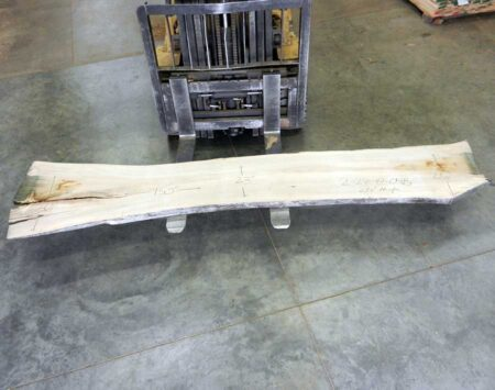 Natural Edge Slab Silver Maple Wood From the Hood Minneapolis