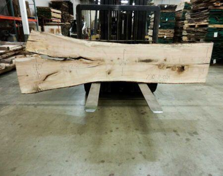 Silver Maple Slab Inventory Wood From The Hood