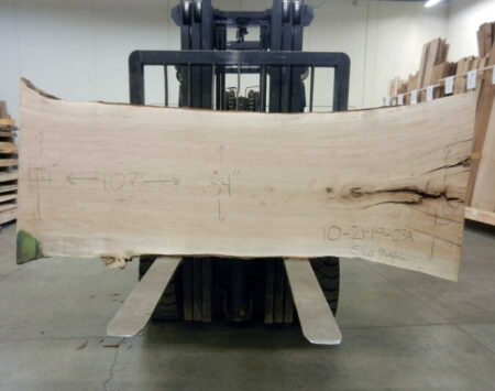 Silver Maple Wood Slab Wood From The Hood