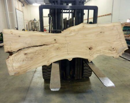 Elm Slab Wood From The Hood