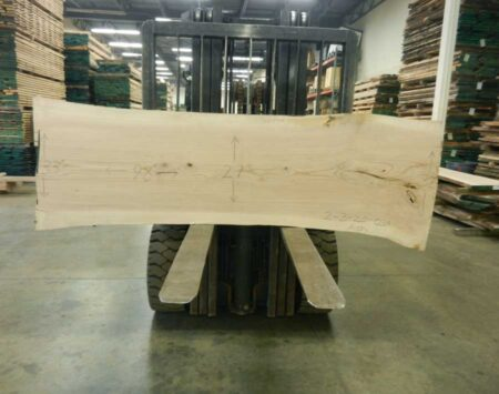 "Ash Natural Edge Slab #2-3-20-05 (98"" x 31"" x 2.25"")"
