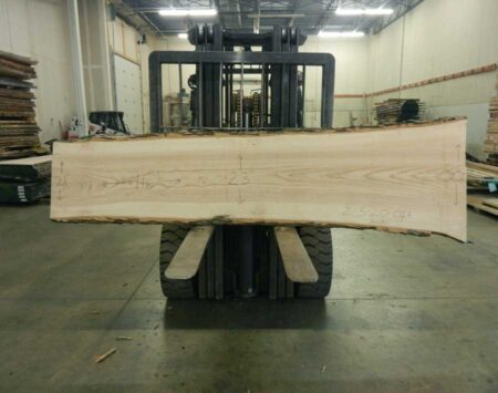 Live Edge Ash Slab Wood From The Hood