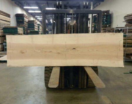 Ash Wood Slab Wood From The Hood
