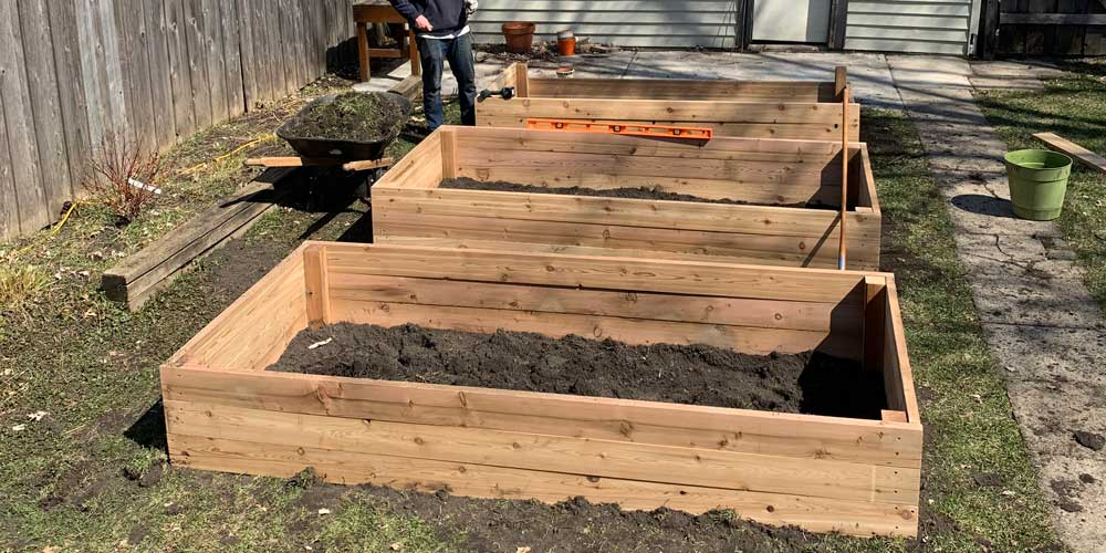 A Time to Plant A Time to Come Together Wood From The Hood