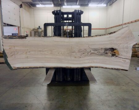 "Ash Natural Edge Slab #7-14-20-01 (145"" x 40"" x 2.25"")"