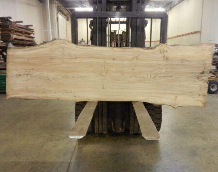 "American Elm Natural Edge Slab #1-4-21-02 (112"" x 31"" x 1.75"")"