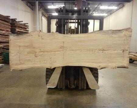 "American Elm Natural Edge Slab #1-4-21-03 (112"" x 34"" x 2"")"